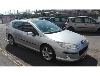 <strong>PEUGEOT 407 SW</strong><br/>